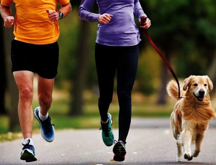 Laufen hilft beim Abnehmen Yahoo Kids