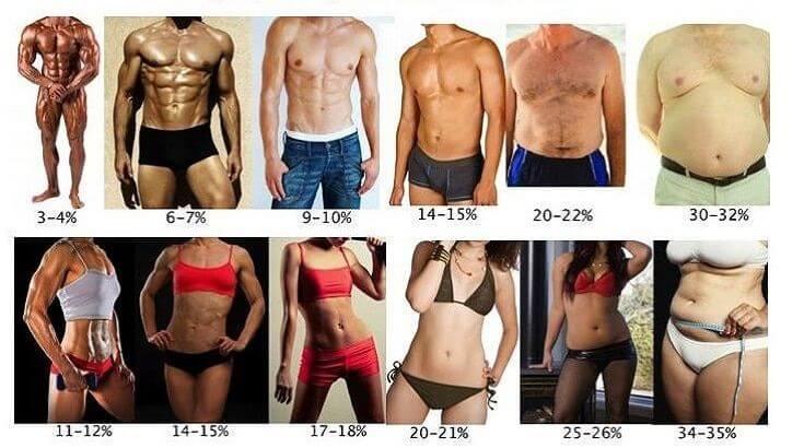 Gewichtszunahme, aber Körperfett ging zurück